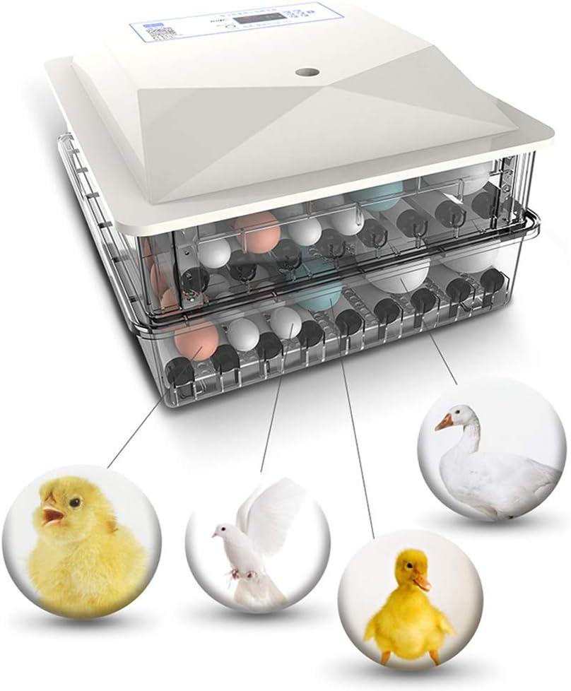 Brutmaschine Leicht zu beobachten Brutapparat Wendung Eierart Automatische AQAWAS Inkubator Reptilien F/ür Huhn//Ente//Gans//Taube//Wachtel,White/_98 Eggs