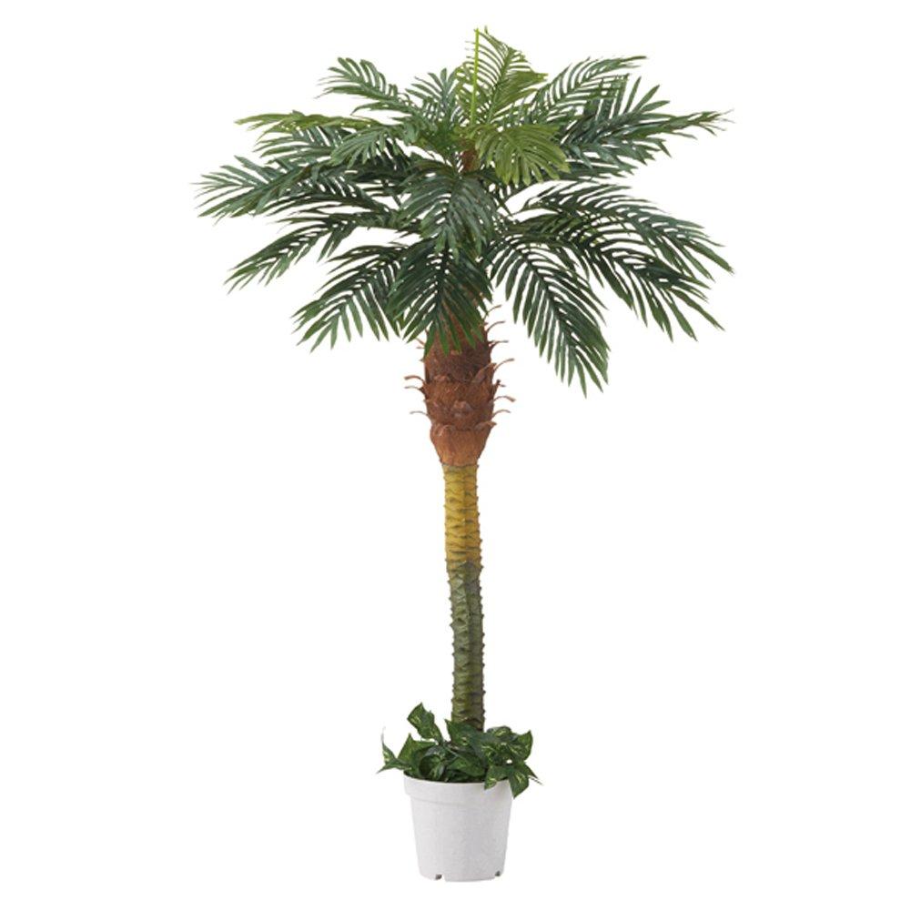 人工樹木 デラックスパームツリー(ヤシの木)立ち木 (H180cm) 1本 B00MMEN6LW