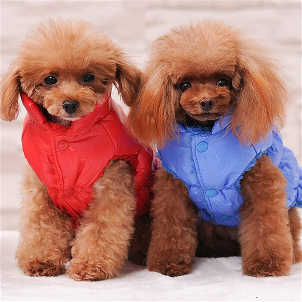 ultraligero Abrigo de plum/ón para perro grueso para invierno suave c/álido Abrlo para mascotas