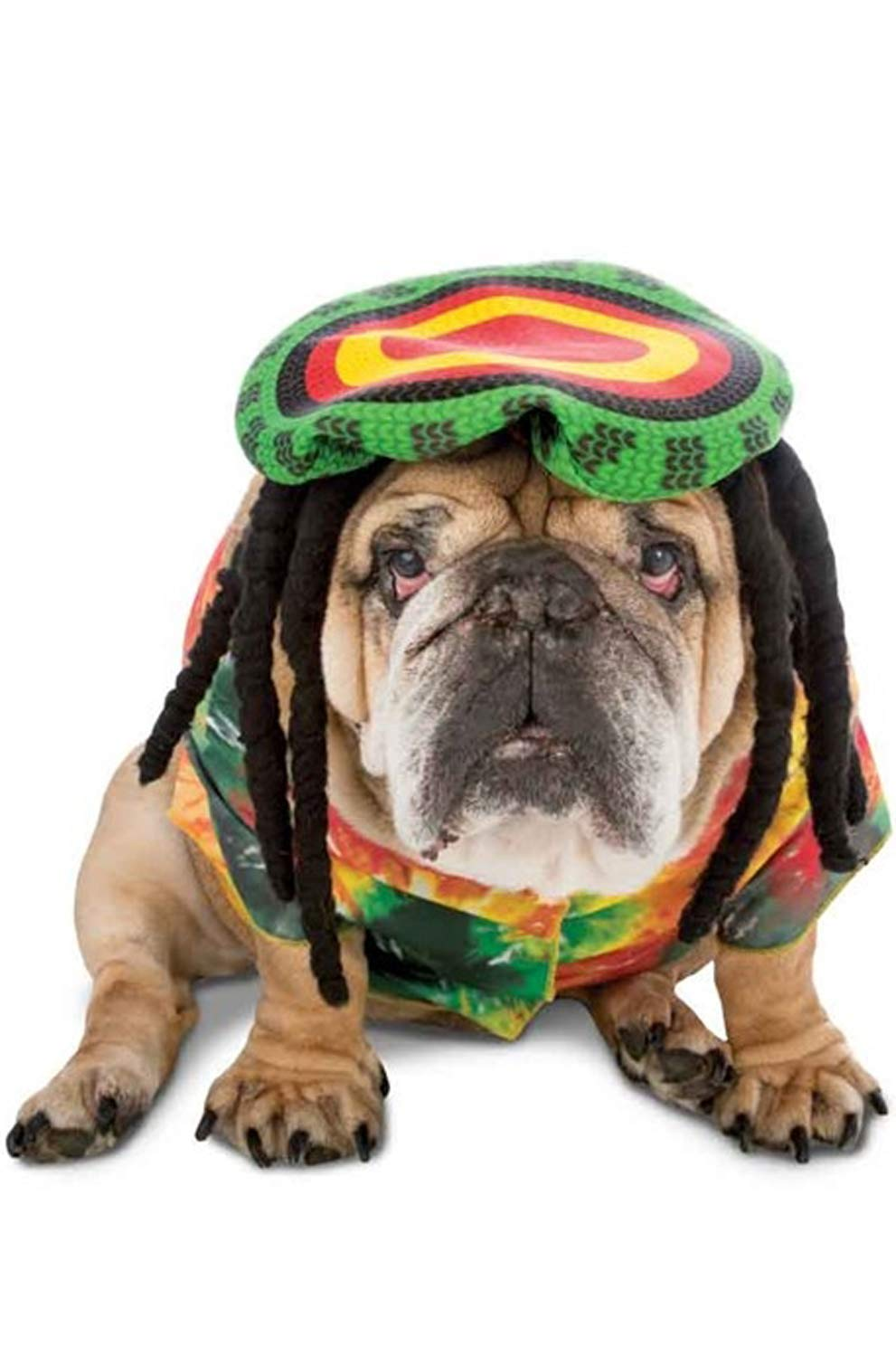 Rasta Imposta Rasta Dog Costume, X-Large by Rasta Imposta