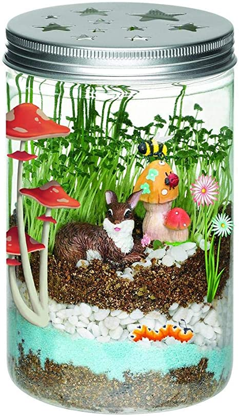 Juguetes para plantas, herramientas de jardín para niños, kit de cultivo de plantas con luz LED, juguetes para niños, botella de cristal para niños LED-Licht transparente Flasche: Amazon.es: Bebé
