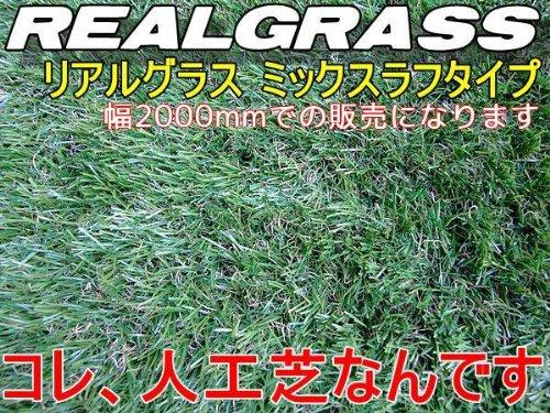 人工芝(芝高30mm) 2m幅×2m★上質RealGrass リアルグラス B008NIJCZ0 13600
