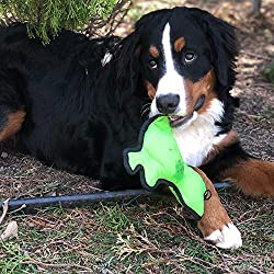 SmartPetLove Tender-Tuffs Simple - Tough Plush Dog Toy - Green Frog