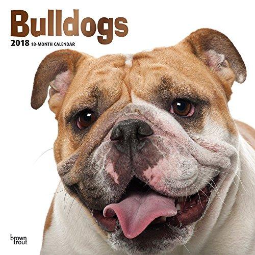 Bulldogs 2018 Wall Calendar