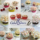 Russian Piping Tips Set - 30 pcs Cake Cupcake Decorating Supplies Kit - 14 Icing Frosting Nozzles (2 Leaf Tips) - 12 Baking Pastry Bags - Silicone Bag - 3 Couplers - Gift Box