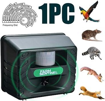 Jardín exterior repelente de mosquitos repelente de mosquitos ultrasónico gaviota cuervo gato ratón paloma agente de control de plagas: Amazon.es: Bricolaje y herramientas