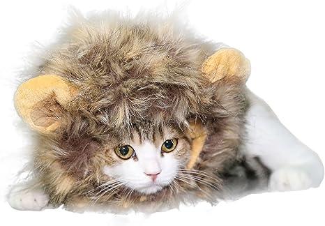 CAOQAO - Disfraz para Gato, Marino, Mascota, Disfraz de león ...