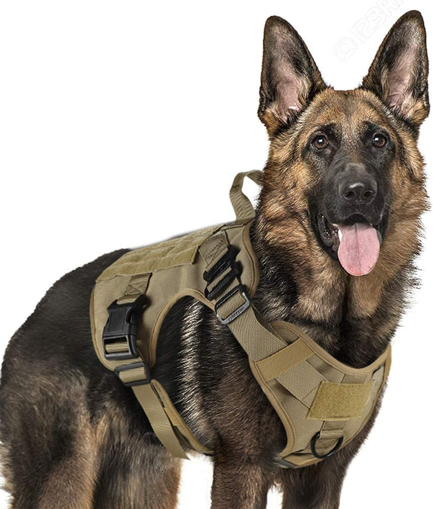 best costumes for german shepherds