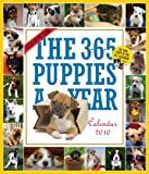The 365 Puppies-A-Year Calendar 2010 (Picture-A-Day Wall Calendars)