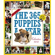 The 365 Puppies-A-Year Calendar 2010