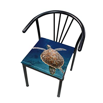 "Bardic HNTGHX Outdoor/Indoor Chair Cushion Ocean Sea Turtle Square Memory Foam Seat Pads Cushion for Patio Dining, 16"" x 16"": Home & Kitchen"