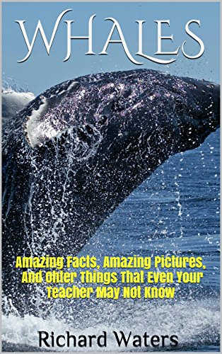 (WHALES: Amazing Facts, Amazing Pictures, and Other Things About Whales That Even Your Teacher May Not Know (Children's Books About Sea Life Book 3))