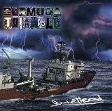 Bermuda Triangle by Buckethead (2002-07-23)