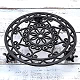 "Skelang 13.3"" Plant Stand Cast Iron Plant"