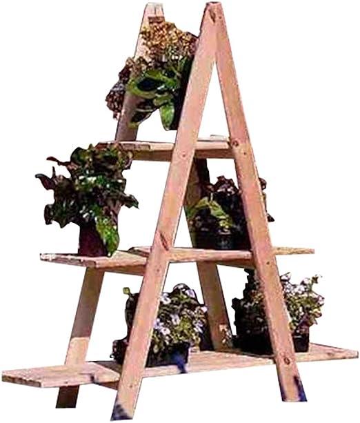 promadino - Escalera decorativa: Amazon.es: Hogar