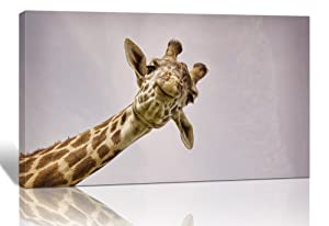 Purple Verbena Art Lovely Giraffe Watching Picture Wall Decor Art Animal Painting Giclee Canvas Print Artwork Contemporary Framed Decoration for Home Office Living Room 12x16 Inch