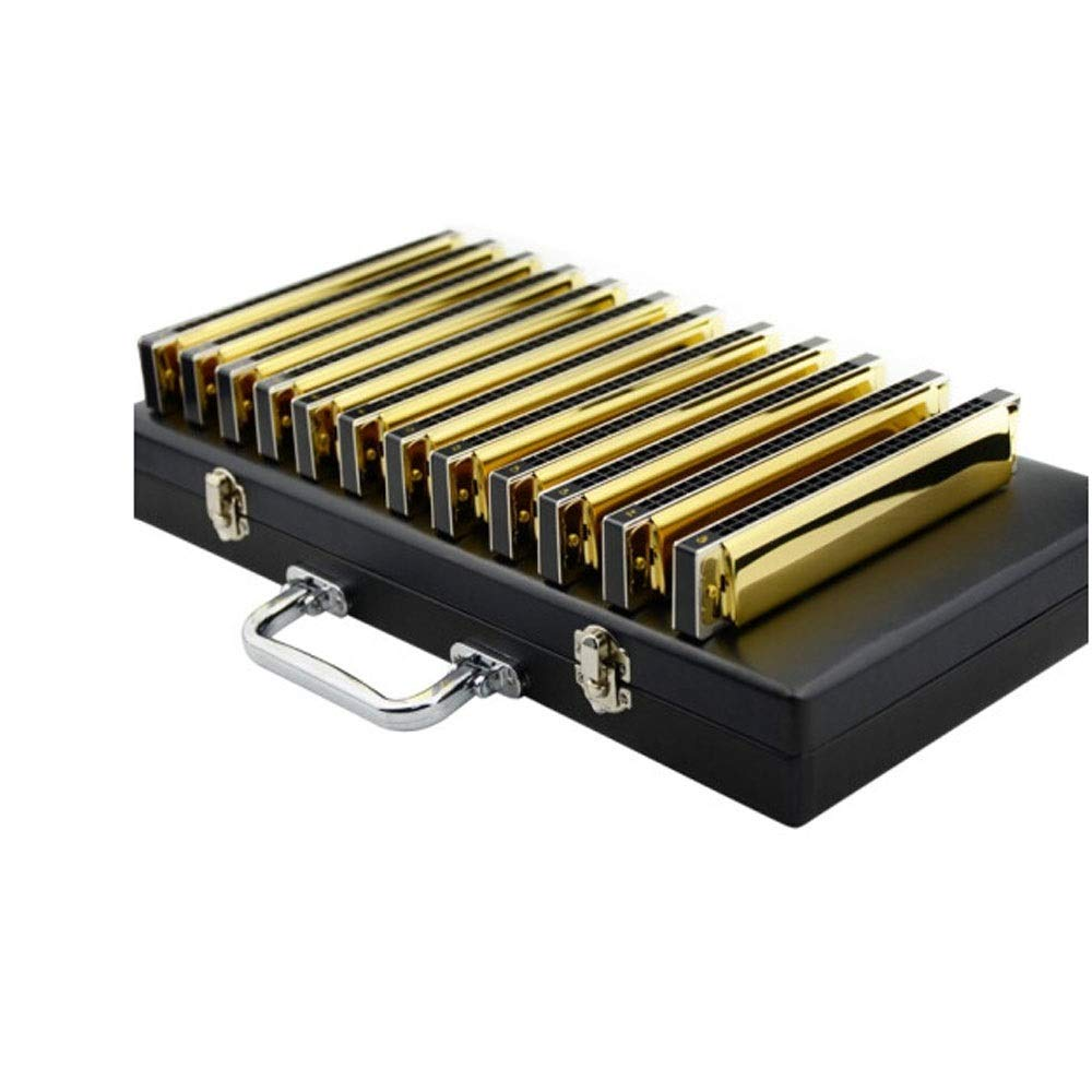 8haowenju ハーモニカ、24ホール12トーンポリフォニックハーモニカ、12トーンスーツABCDEFGA#C#D#F#G#ハイエンドギフトボックス、12トーンスーツ[シルバー/]厚手[キャンバスバッグ] 消費者の最良の選択 (Color : Gold)  Gold B07QWH41W8