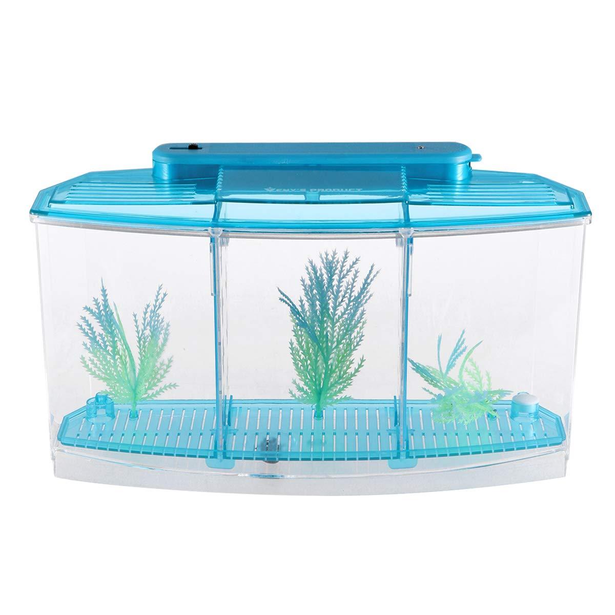 POPETPOP Mini Desktop Aquariums Fish Tank Ecological Goldfish Tank Hatchery Breeder Box for Living Office and Home dÃcor(Blue) by POPETPOP (Image #2)