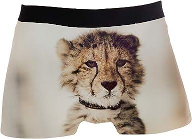 SHRGRGR Mens Stretch Underwear Handsome Pitbull Boxer Briefs Printed