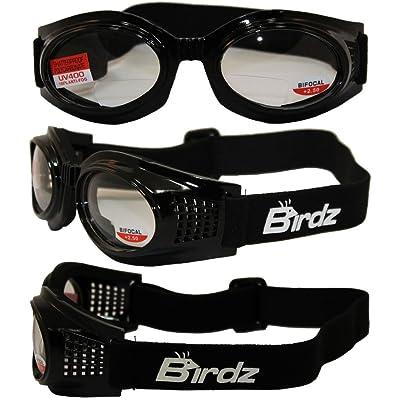 Birdz Eyewear Kite Motorcycle Goggles