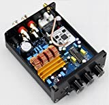 1 pcs lot TPA3116 amp + LM1036 tone digital