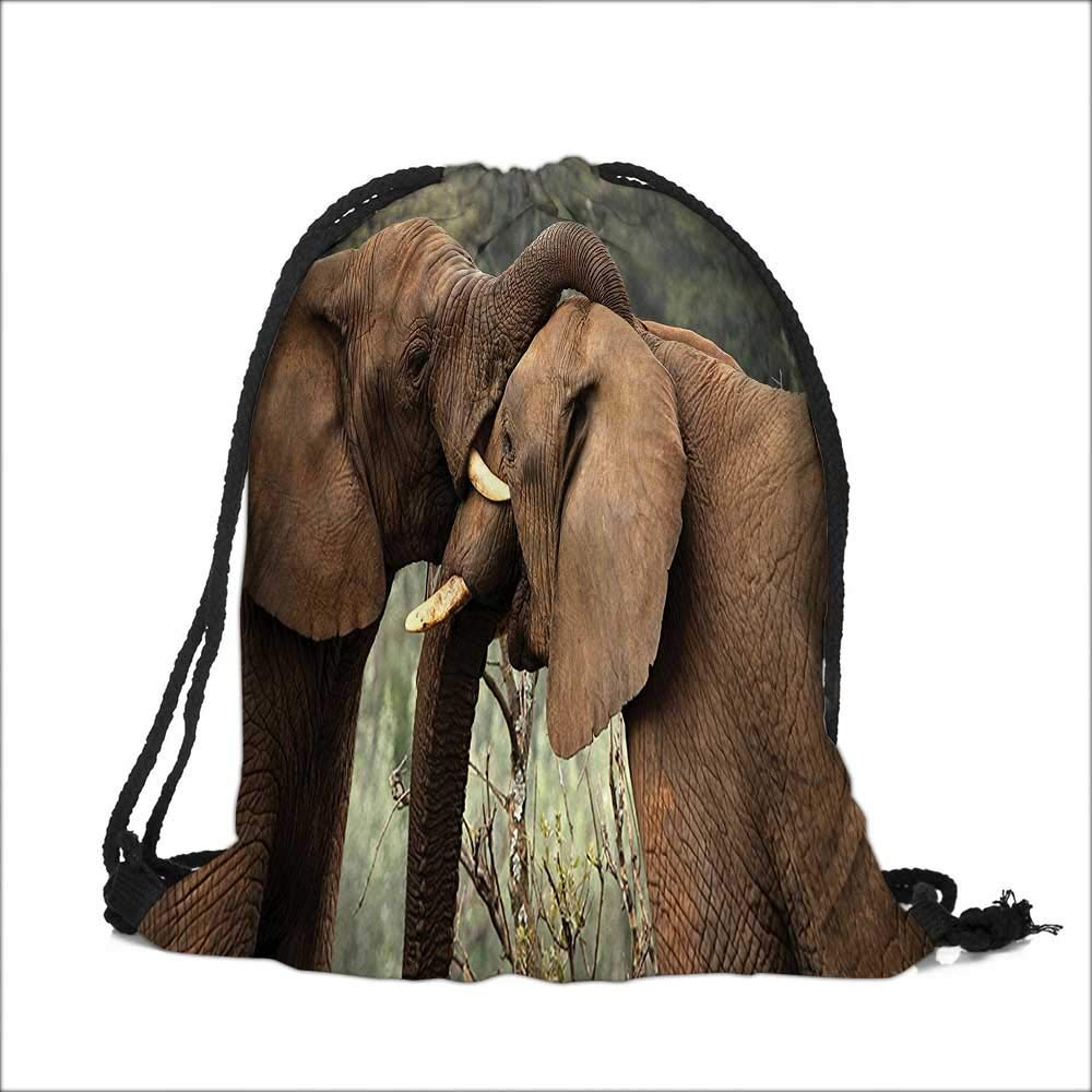 printing Drawstring Gift Bag Safari Two Wild Savanna s Wrestling Icons South s Game Brown Green for Travel,Family,Dorm 13.5''W x 16''H