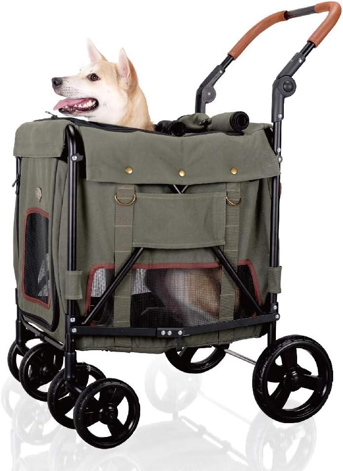 Dog sitting inside a pet carrier