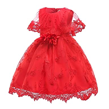 6563e21be Image Unavailable. Image not available for. Color: Girl Princess Dress Lace  Bowknot Flower Beading Fluffy ...