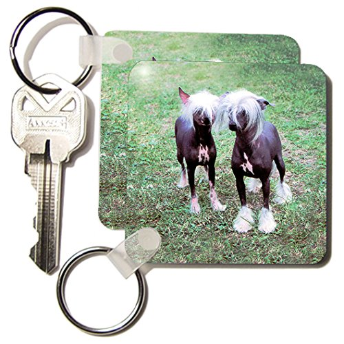 Hairless Chinese Crested - Dogs Chinese Crested Hairless - Chinese Crested Hairless - Key Chains - set of 2 Key Chains (kc_415_1)