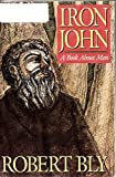 img - for Iron John, A Book About Men book / textbook / text book
