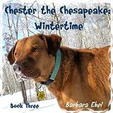 Chester the Chesapeake Book Three: Wintertime (The Chester the Chesapeake Series 3) (English Edition)