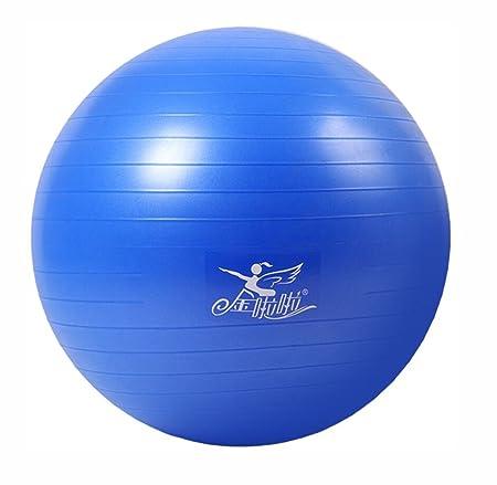 LJBOZ Bola de Yoga, Espesa a Prueba de explosiones Gym Ball ...