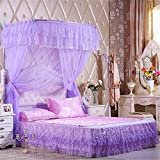 Royal- U-shaped Fishing Rods Telescopic Mosquito Net Three-door Single Double Encryption Thickening Stainless Steel Bracket Purple ( Color : 25mm , Size : 1.5m (5 feet) bed )