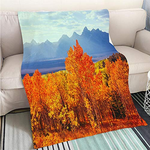 (BEICICI Breathable Flannel Warm Weighted Blanket Autumn Aspen Trees in Grand Teton Natioal Park WY Living Room/Bedroom Warm Blanket)
