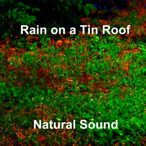 Price comparison product image Rain on a Tin Roof