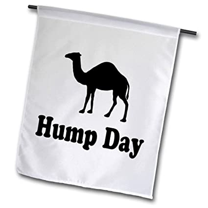 Amazon.com : 3dRose EvaDane - Funny Quotes - Hump Day - 12 x ...