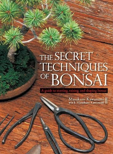 Secret Techniques Bonsai Starting Raising product image