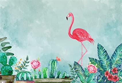 YongFoto 2,2x1,5m Vinilo Telón de Fondo Cumpleaños Pink Flamingo Cactus y Flores Fondo para Fotografia Fiesta Niños Boby Retrato Personal Estudio ...