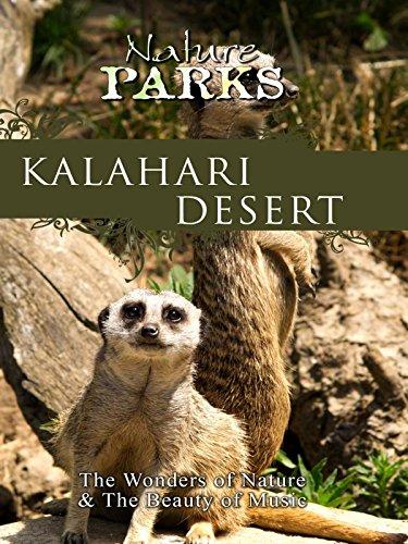Nature Parks - Kalahari Desert, Botswana (Kalahari Square)