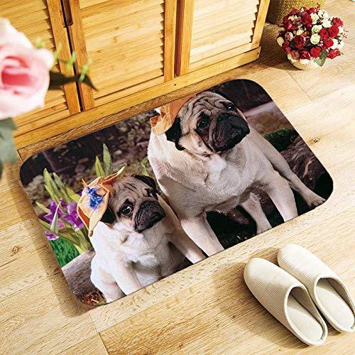 Zerbino Adugable Pug cani stampati Tappetini dingresso tappetino morbido antiscivolo 40x60cm Color : 8-40 * 60cm