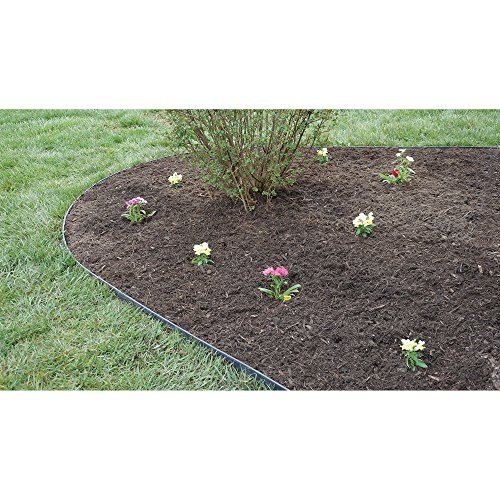Dimex easyflex easy and quick no dig yard landscape border for Pool garden edging