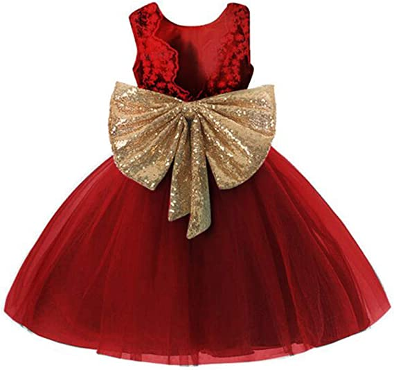 Amazon.com: 0-12 años Bebé Flor Niña Vestido de Boda: Clothing