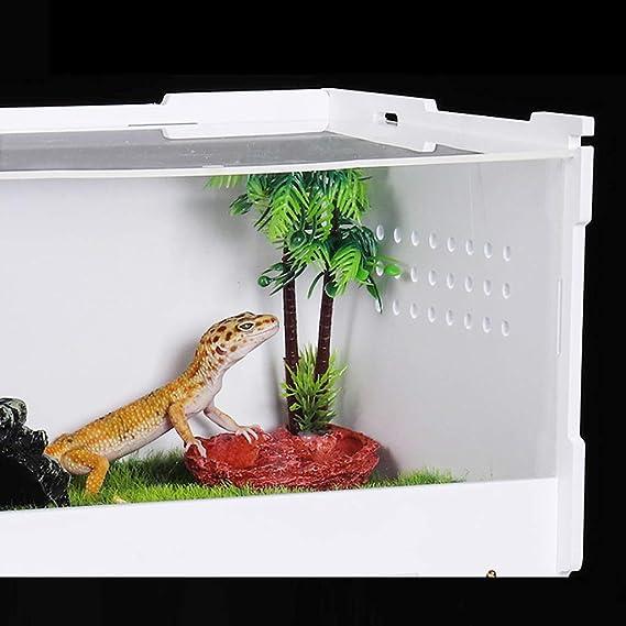 B Blesiya Caja Terrario Plástico Mascota Reptil Accesoiros de Acuario Decorativo Resistente Duradero: Amazon.es: Productos para mascotas