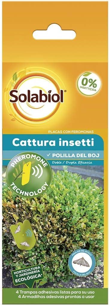 Solabiol Placas Cromotrópicas con Feromonas para la Polilla de Boj ...