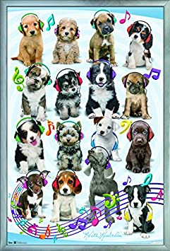 Trends International Puppy – Headphones Wall Poster 24.25 X 35.75 Multicolor