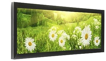 Amazoncom Displays2go Set Of 2 24 X 8 Panoramic Photo Frame For