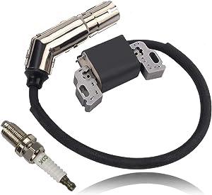 Alibrelo 595304 Ignition Coil Magneto Armature for 21R707 219807 215802 21B977 21A807 21A907 31A507 31C707 31E777 Engines Replace 592841 795315 799650