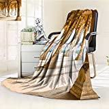 Digital Printing Blanket Theme Gallery of s at Agra Fort India Light Coffee Summer Quilt Comforter