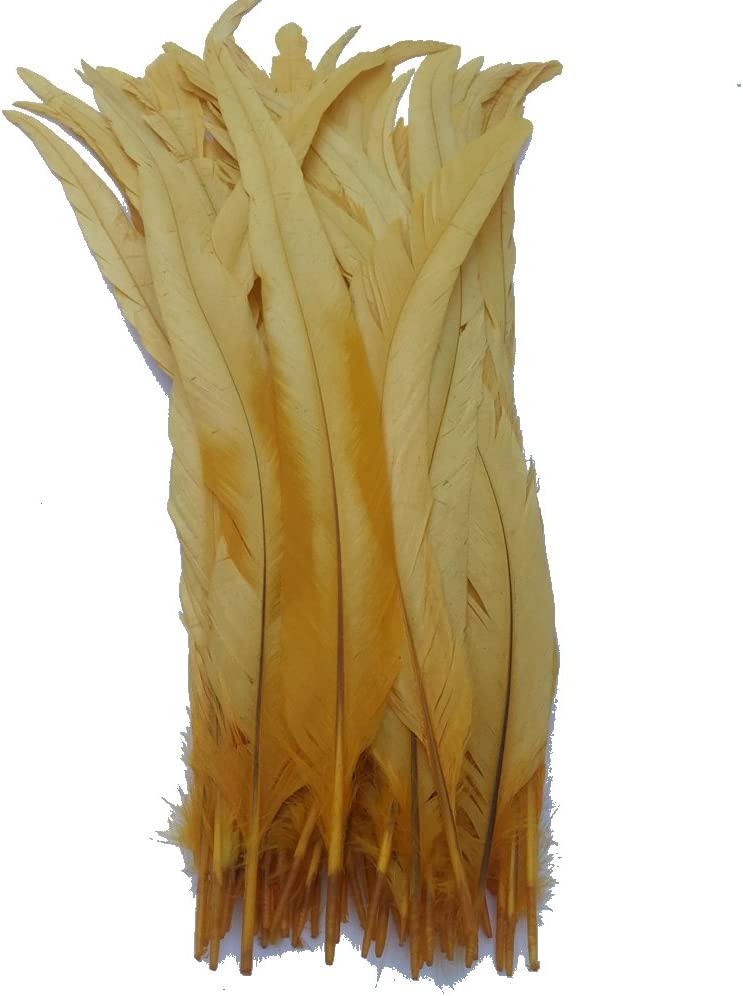 Sowder Black Rooster Coque Tail Feathers 13-16inch Lengh Pack of 50