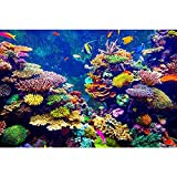 Pitaara Box PB Coral Reef & Tropical Fish In Sunlight Peel & Stick Vinyl Wall Sticker 35 x 23.3inch